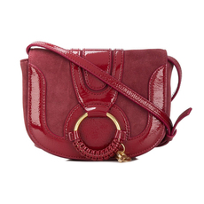 See By Chloe Small Hana Crossbody Bag Acerola
